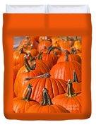 Many Pumpkins In A Row Art Prints Duvet Cover