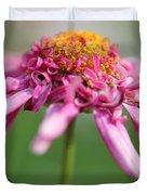 Marguerite Daisy Named Summer Song Rose Duvet Cover