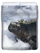 Marine Iguana In Surf Galapagos Islands Duvet Cover