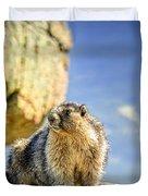 Marmot Duvet Cover