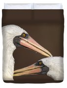Masked Booby Couple Allopreening Duvet Cover