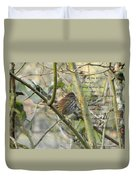 Mathew 6 Vs 26 Thrush Duvet Cover
