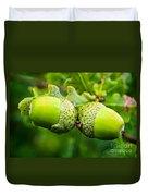 Maturing Acorns Duvet Cover