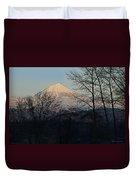 Mclaughlin Late Winter Day Duvet Cover