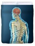Medical Illustration Of Human Brain Duvet Cover