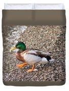 Meet Mr. Quack - A Mallard Duck Duvet Cover