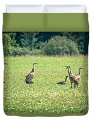 Meeting Of The Cranes Duvet Cover