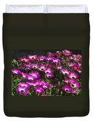Mesembryanthemums 3 Duvet Cover