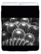 Mexican Golden Barrel Cacti Duvet Cover