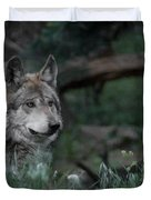Mexican Grey Wolf Duvet Cover