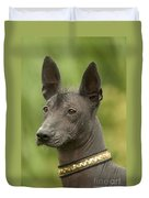 Mexican Hairless Dog Duvet Cover