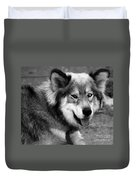Miley The Husky With Blue And Brown Eyes - Black And White Duvet Cover by Doc Braham