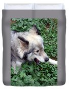 Miley The Husky With Blue And Brown Eyes - Impressionist Artistic Work Duvet Cover