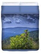 Milkweed Plants Along The Blue Ridge Parkway Duvet Cover