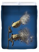 Milkweed Pods On A Blue Background  Duvet Cover