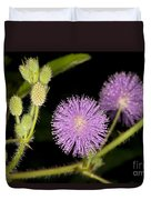 Mimosa Pudica  Duvet Cover