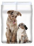 Miniature American Shepherd With Puppy Duvet Cover