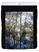 Mirroring The Swamp Duvet Cover
