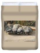 Mischievous Meerkats Duvet Cover