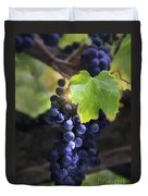 Mission Grapes II Duvet Cover