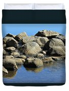 Mississippi Headwaters Duvet Cover