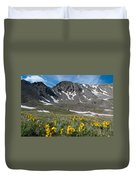 Missouri Mountain And Wildflower Landscape Duvet Cover