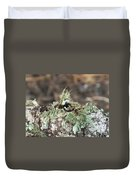 Misty Moss Duvet Cover
