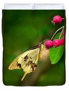 Mocker Swallowtail Butterfly And Berries Duvet Cover