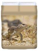 Mojave Desert Iguana Duvet Cover