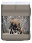 Mom And Young Moose Duvet Cover