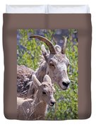Momma And Baby Ram Duvet Cover