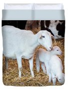 Momma And Newborns Duvet Cover