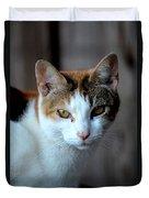 Momma Cat Duvet Cover