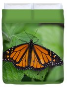 Monarch 3 Duvet Cover