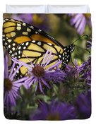 Monarch And Asters Duvet Cover