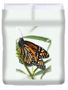 Monarch Beauty Duvet Cover