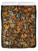 Monarch Butterflies Wintering Duvet Cover