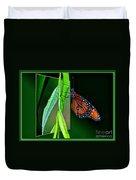 Monarch Butterfly 04 Duvet Cover