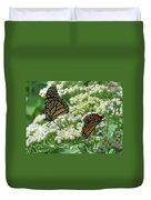 Monarch Butterfly 56 Duvet Cover