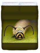 Monarch Butterfly Caterpillar I Duvet Cover