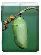 Monarch Butterfly Chrysalis Developing Duvet Cover