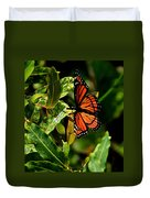 Viceroy Butterfly II Duvet Cover