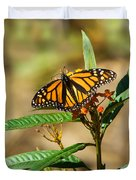 Monarch Butterfly On Plant With Eggs Duvet Cover