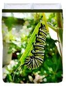 Monarch Caterpillar 5 Duvet Cover