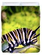 Monarch's Caterpillar.nz Duvet Cover
