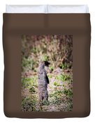 Mongoose Standing. Safari In Serengeti Duvet Cover
