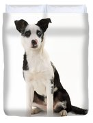 Mongrel Dog, Border Collie Cross Duvet Cover