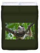 Monkey Business Duvet Cover by Bob Christopher