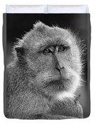 Monkey's Eyes Duvet Cover