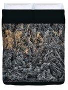 Mono Lake Duvet Cover